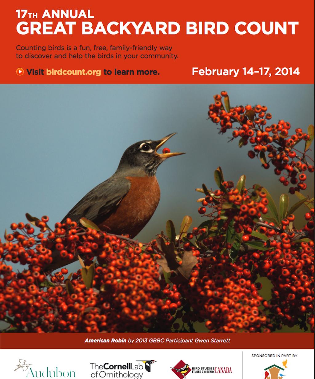 Backyard Bird Count 2014 Poster