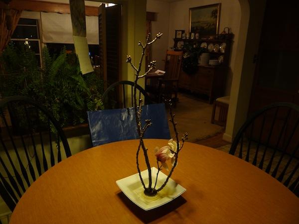 Ikenobo from cherry and magnolia