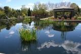 The Monet Pool