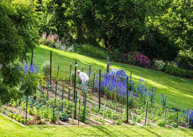 Julia Landrum Garden