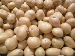 Loose Potatoes, Maksym Kozlenko