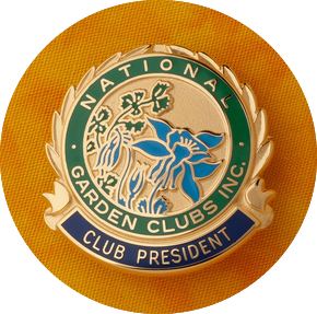 The Official President's Pin